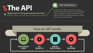 What Does API stand for